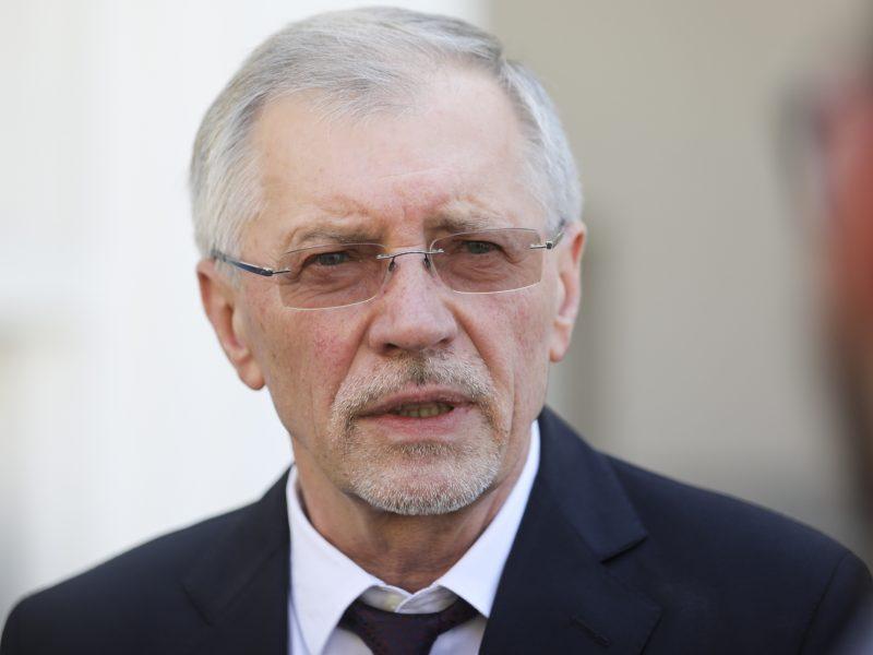G. Kirkilas: tęsti tyrimą dėl I. Rozovos nebėra prasmės