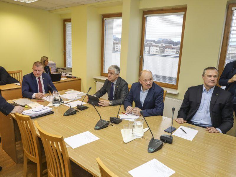 Tyrimas dėl I. Rozovos: Seimo komitetas liudyti kviečia ir S. Skvernelį