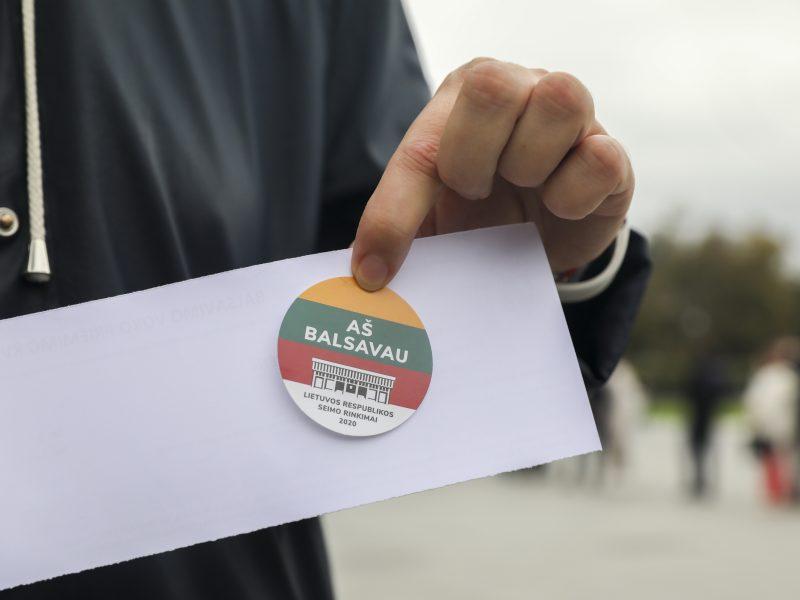 Seimo rinkimų antrasis turas: iki ketvirtadienio galima balsuoti iš anksto