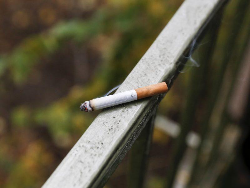 E. Gentvilas apie draudimą rūkyti balkonuose: tai – neveikiantis įstatymas