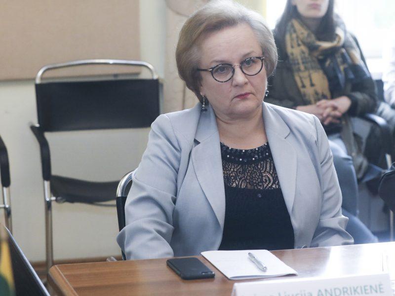 Seimo tarpparlamentinių ryšių su Balkanų šalimis grupei vadovaus L. Andrikienė