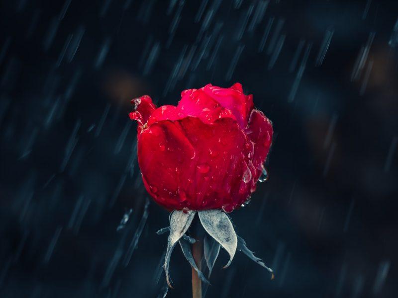 Orai: sinoptikai nieko gero nežada – tik lietus lietus lietus