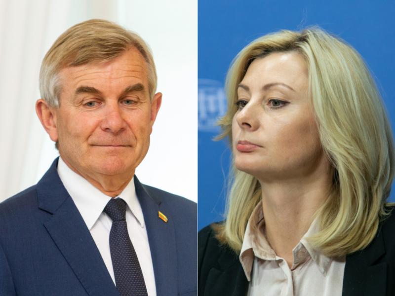 Ministrė nepritaria siūlymui panaikinti Seimo pirmininko apsaugą
