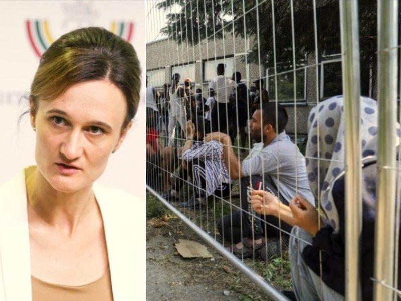 Seimo vadovė: į nelegalius migrantus nereikėtų žiūrėti kaip į agresorius