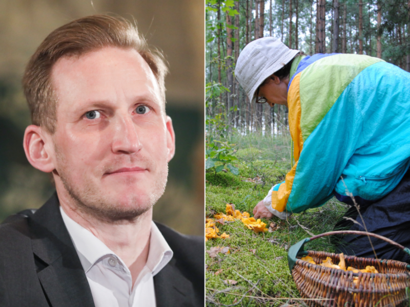Socialdemokratas L. Jonauskas: miškuose pradės kilti tvoros