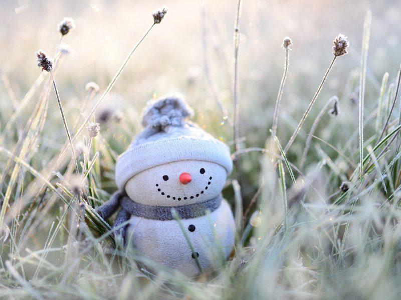 Orai: po menko šalčio grybštelėjimo vėl grįš šiluma