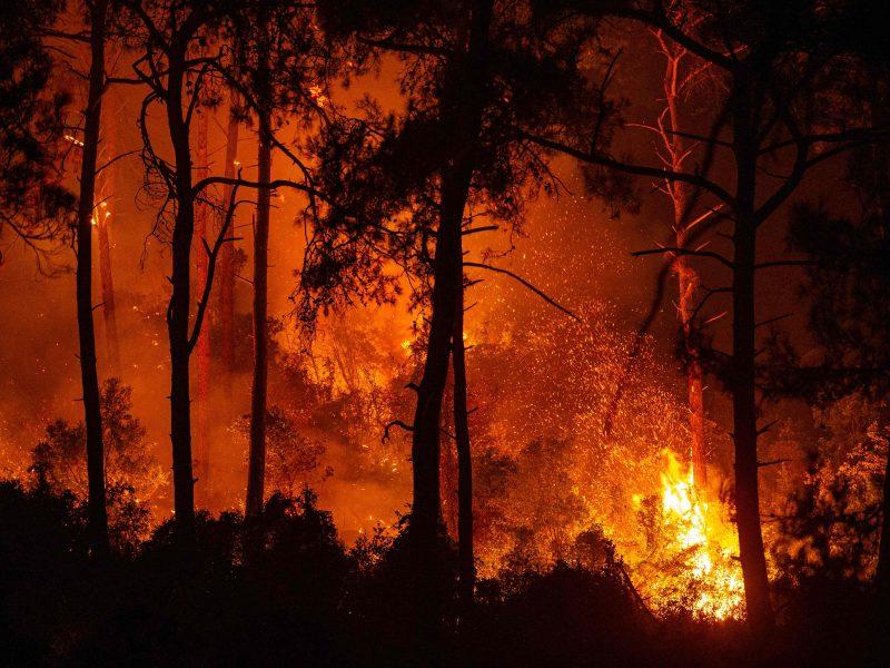 Turkiją siaubia gaisrai