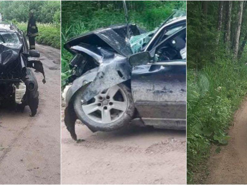 Kretingos rajone į medį rėžėsi automobilis: du žmonės atsidūrė ligoninėje