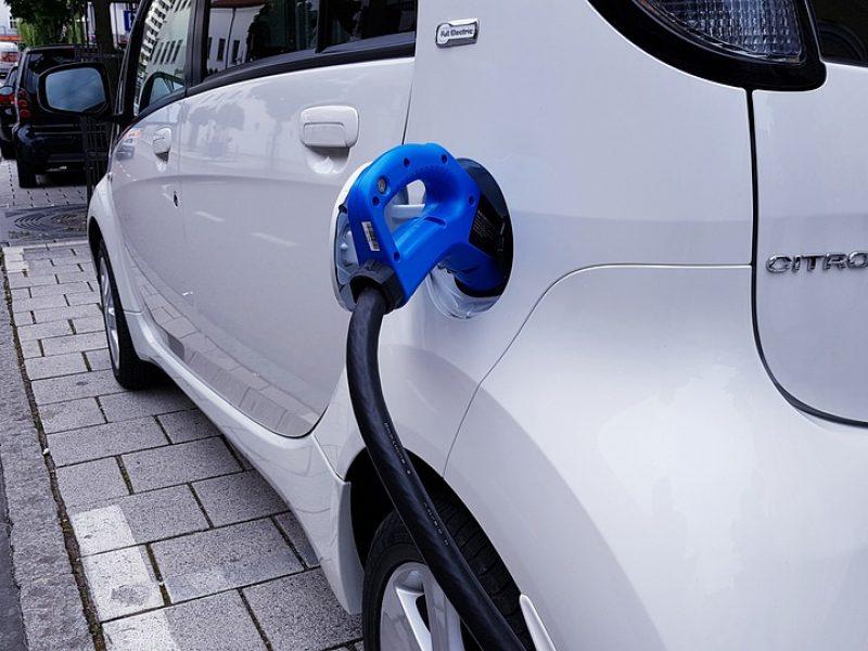 Proveržis: žada elektromobilių modelių padvigubėjimą Europoje