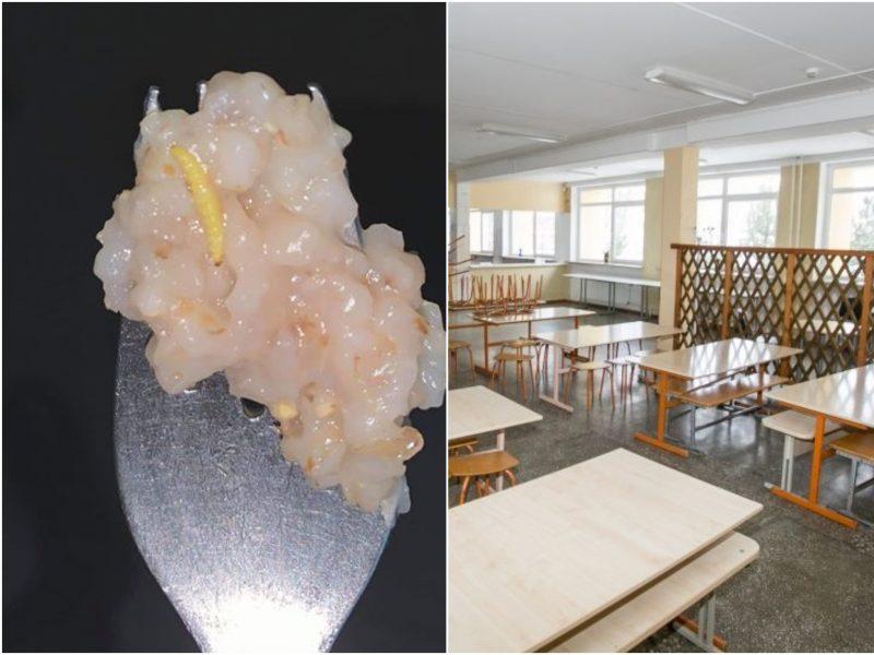 Gimnazijos valgykloje pietūs sklandžiai nepraėjo: mokinė teigia košėje radusi kirmėlę