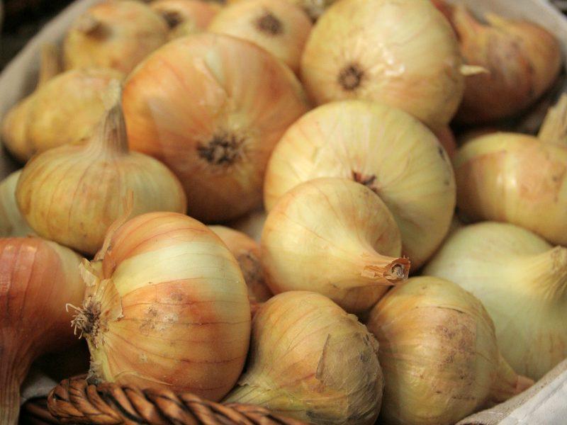 Stichijų pasekmės: svogūnų derlius – mažiausias nuo 2006 metų