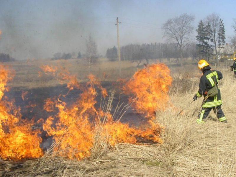 Degančios žolės pasekmės tęsiasi: Rokiškio rajone sudegė trys pastatai