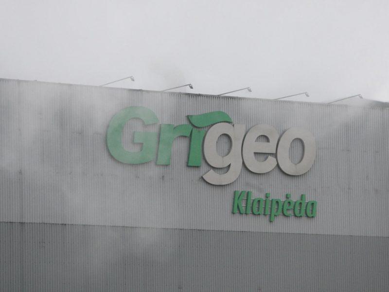 """""""Grigeo Klaipėda"""" prašo pakeisti taršos leidimą"""