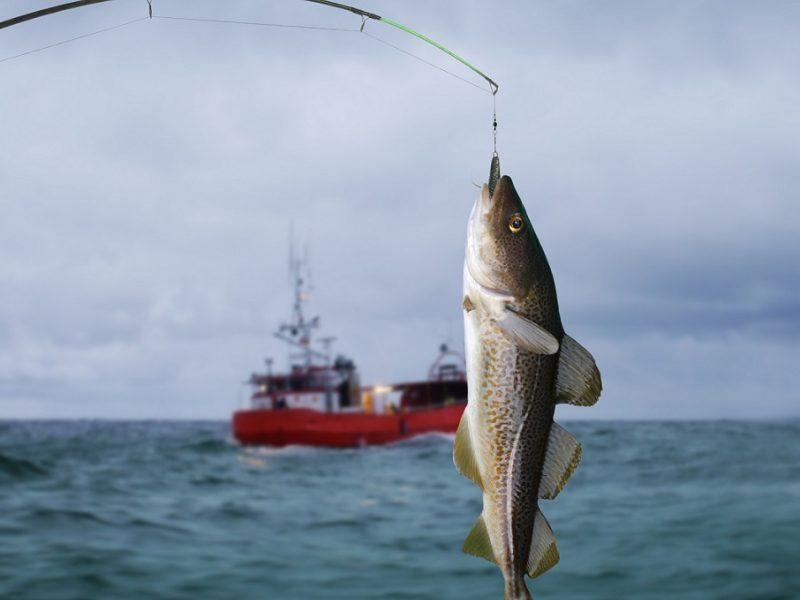 povandeninė žvejyba ir hipertenzija)