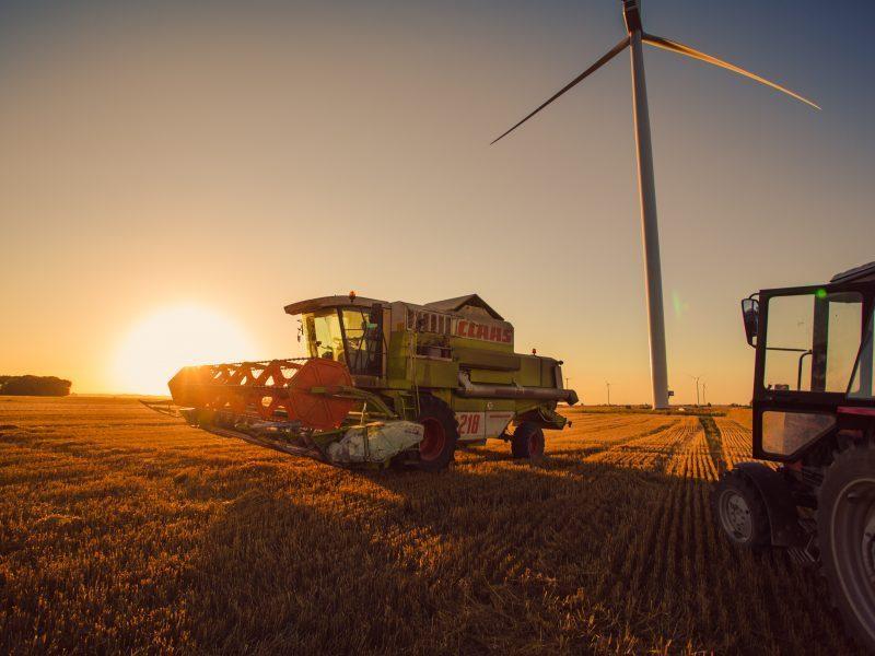 Ekonomikos komitetas spręs, ar reikia tirti situaciją žemės ūkyje