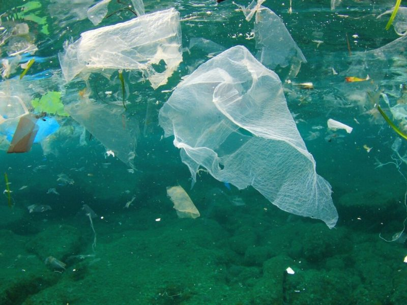 Japonai sukūrė plastikinius maišelius, suyrančius jūros vandenyje
