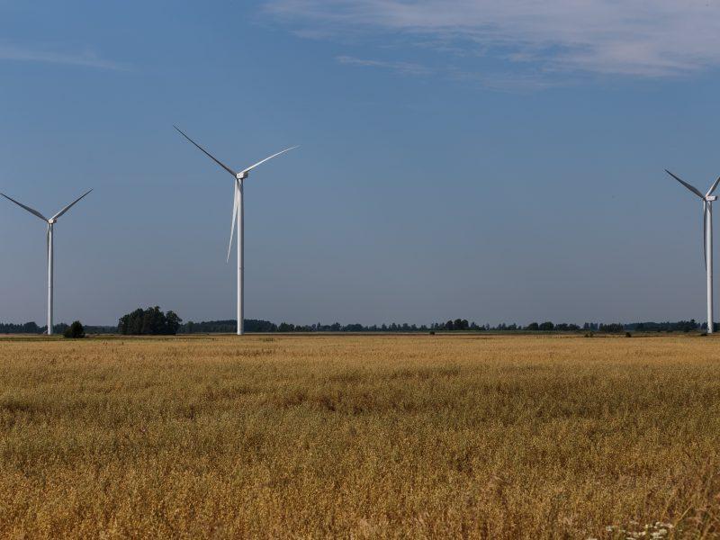 Nesutariama, kas nuties infrastruktūrą vykdant vėjo elektrinių parko projektą