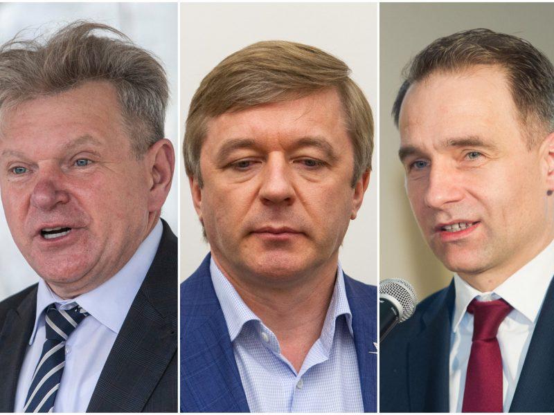 R. Karbauskis: J. Narkevičius buvo geresnis ministras už R. Masiulį
