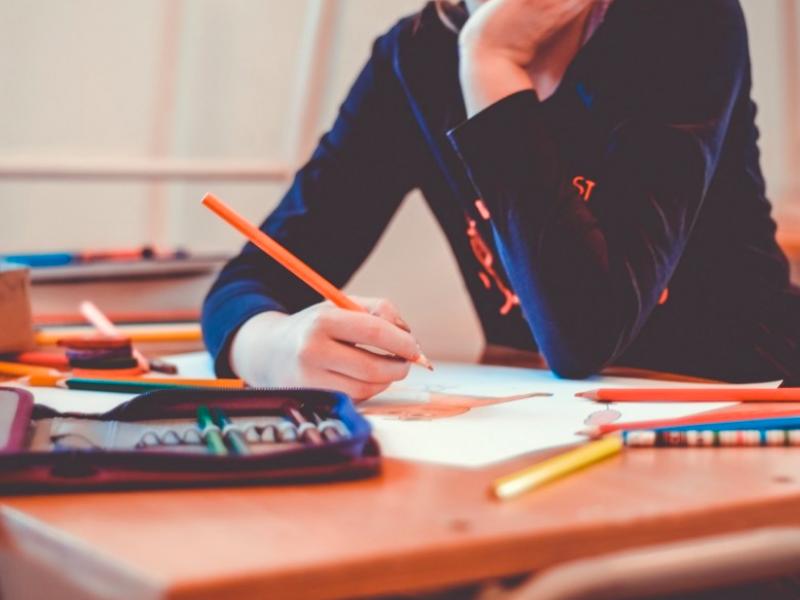 Klaipėdos rajone 5–11 klasių mokiniai mokysis nuotoliniu būdu, išskyrus norinčius testuotis