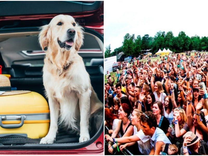 Vasara – festivalių metas: pataria, kokius daiktus būtina pasiimti su savimi