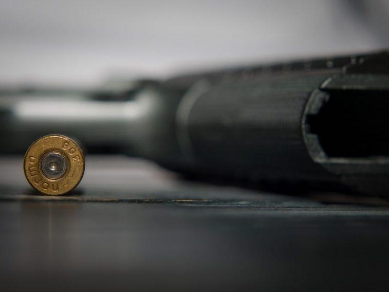 Negyvenamoje sodyboje Panevėžio rajone rastas šaunamasis ginklas