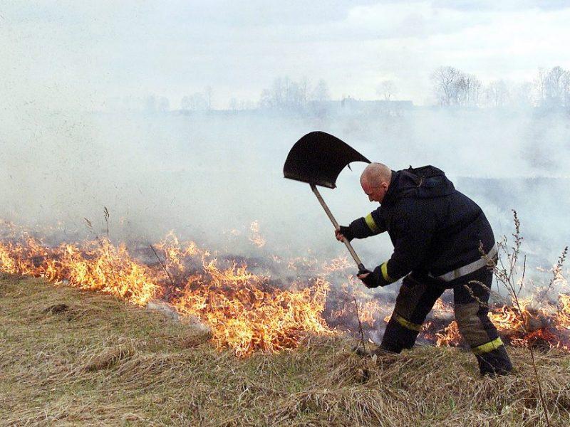 Per parą Lietuvoje kilo 38 žolės gaisrai: išdegė dešimtys hektarų pievų