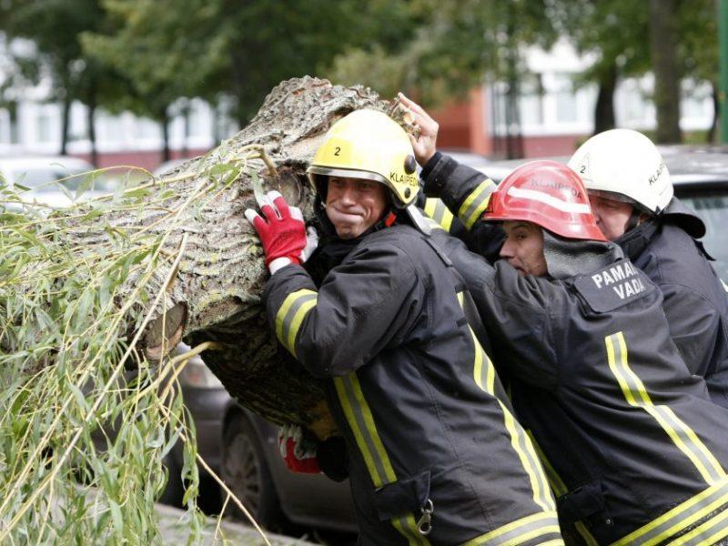 Neramus ketvirtadienis ugniagesiams: 25 kartus vyko šalinti nuvirtusių medžių