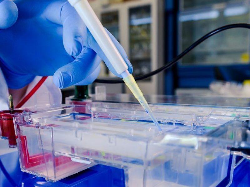 Įsteigtas naujas fondas rems mokslinius tyrimus ir inovacinę veiklą