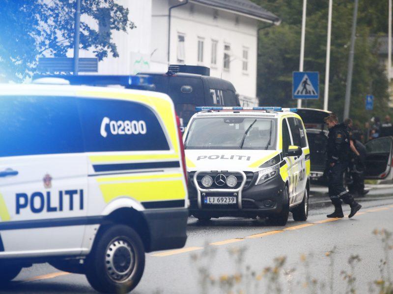 Šaudynėmis mečetėje įtariamas norvegas neigia nužudęs įseserę