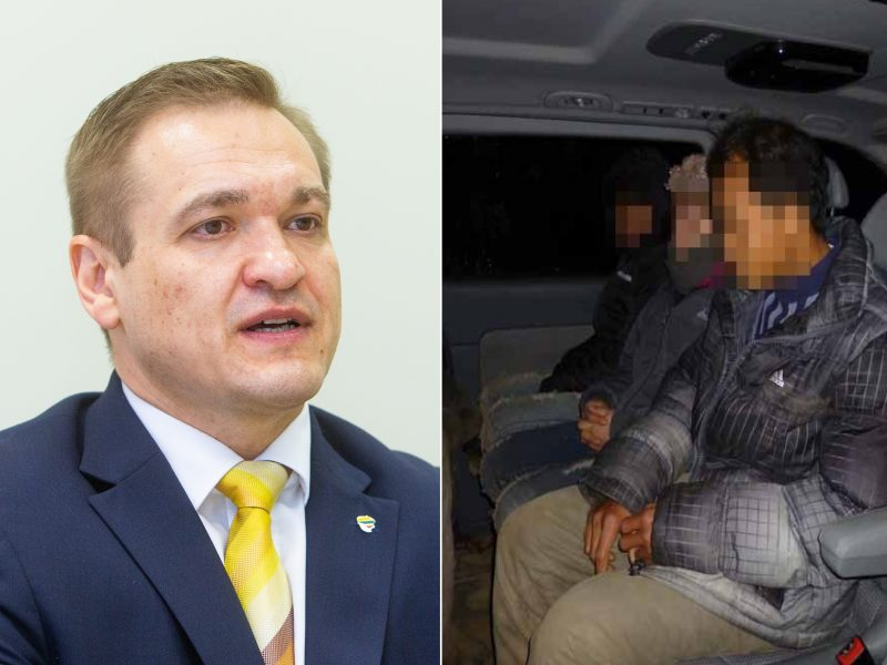 E. Misiūnas su Vietnamo ministru aptarė, kaip deportuoti nelegalius migrantus