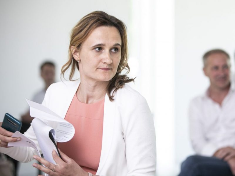 V. Čmilytė-Nielsen: prezidentui ir premjerei reiktų rasti sutarimą dėl atstovavimo EVT