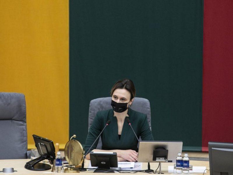 Seimo lyderė į postus esamų vadovų neteiks <span style=color:red;>(interviu)</span>
