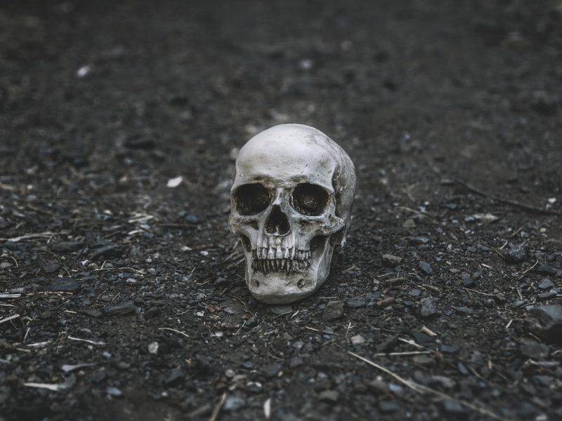 Siaubas: Berlyne sulaikytas kanibalizmu įtariamas vyras