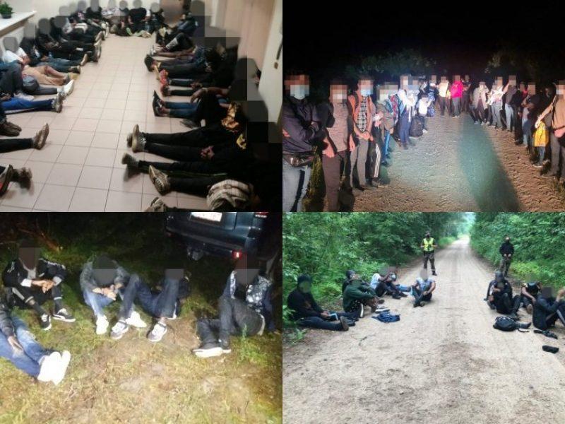 Migracijos departamentas: šiuo metu išnagrinėti prieglobsčio prašymų per dešimt dienų nespėjame