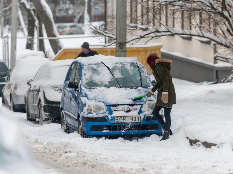 Ir Lietuvai ekonomika svarbiau už klimato kaitą?