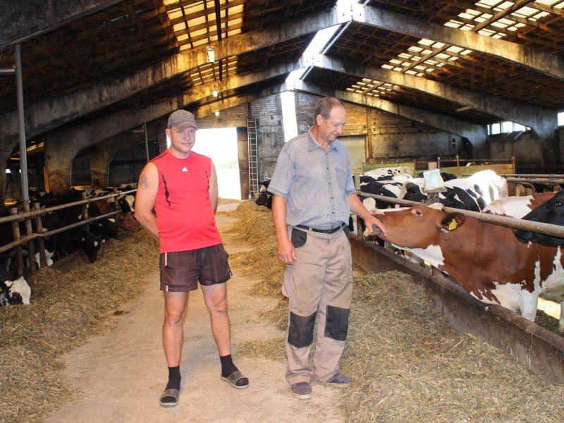 Blogi orai smogė ūkiams: prognozuojami dar vieni liesos karvės metai