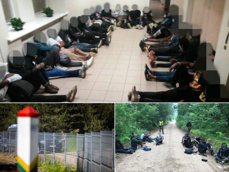 G. Landsbergis: Turkija galėtų padėti nustatyti migrantų tapatybę
