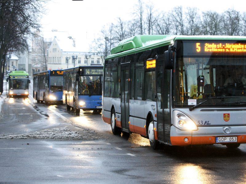 Klaipėdoje per šventes planuojami nemokami autobusai