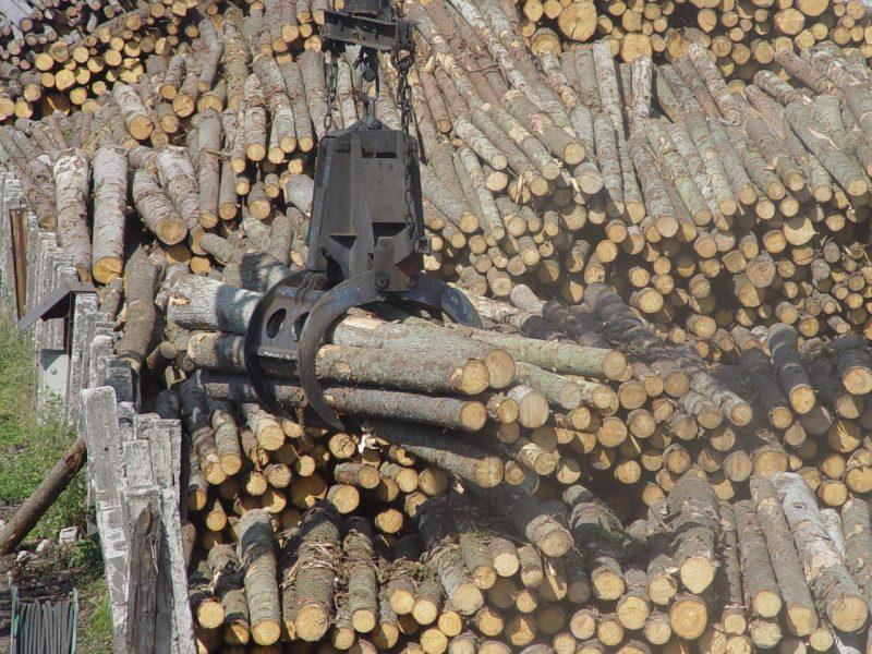 """Įmonėje """"Pajūrio mediena"""" smilko biokuras"""