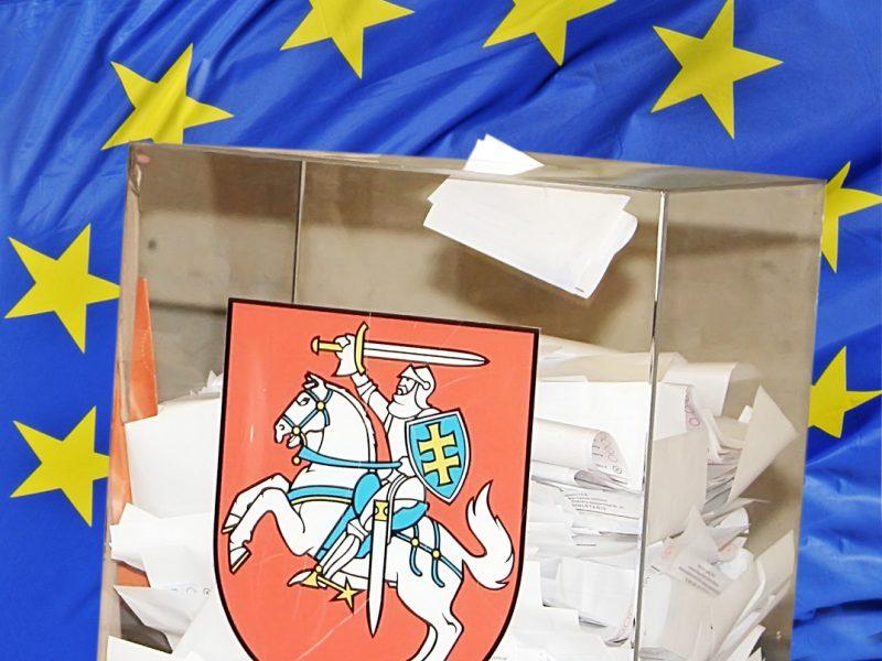 Europarlamento rinkimuose klaipėdiečiai liko už ribos
