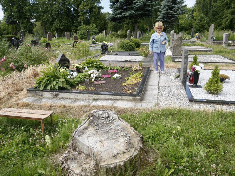 Naujos Klaipėdos kapinės – už miesto