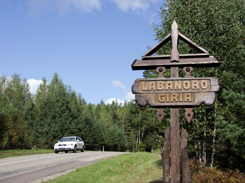 Aplinkos ministras Seime aiškinsis dėl miškų kirtimo