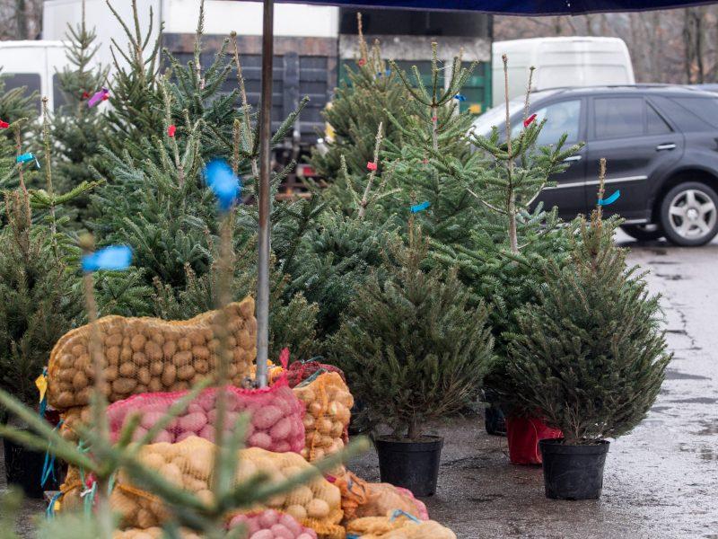 ŽŪM: karantino metu turgavietėse galima prekyba maisto produktais ir eglutėmis