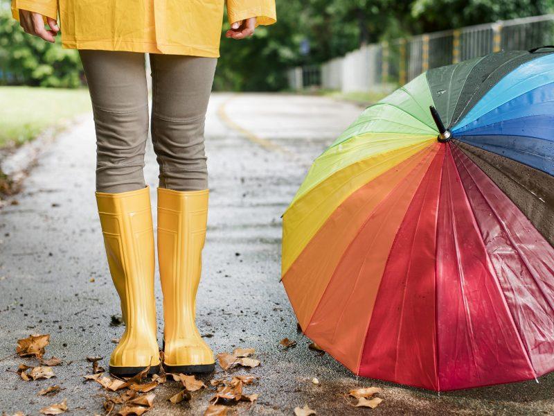 Orai: ruduo bjurs vis labiau – plūstels krituliai, vėliau ir šalnos