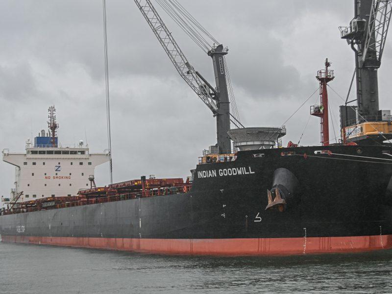"""Ginkluoti Lenkijos pasieniečiai šturmavo """"Greenpeace"""" laivą"""