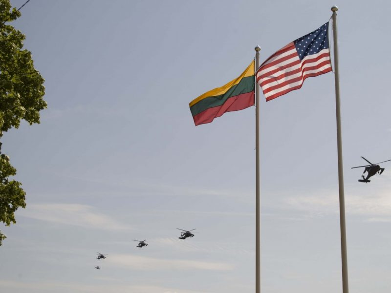 Lietuva iš JAV gaus bepiločių orlaivių užkardymo priemones