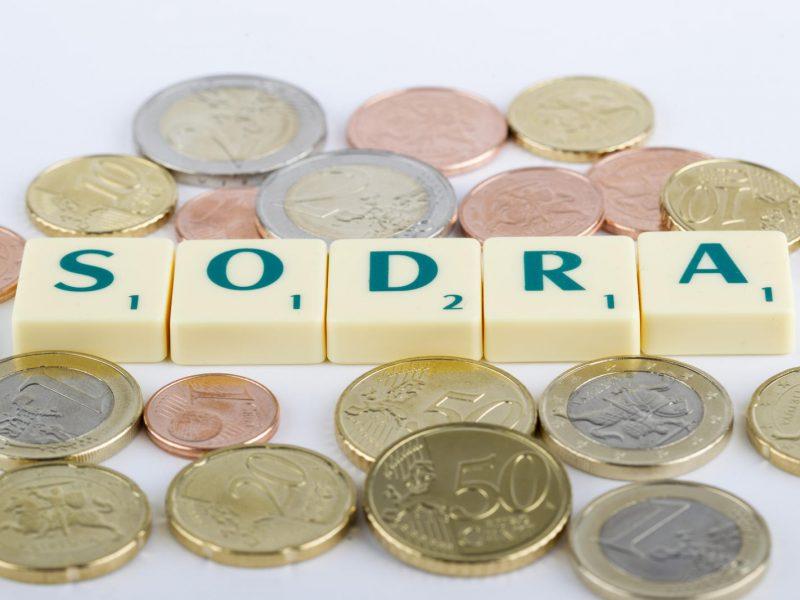 """Seimas pritarė patikslintam """"Sodros"""" biudžeto projektui"""