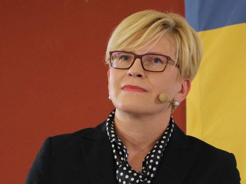 Kandidatų į Lietuvos prezidentus pinigai
