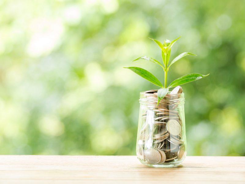 Aplinkos ministerija: siūloma, kad nuo 2023 metų visi viešieji pirkimai būtų žalieji