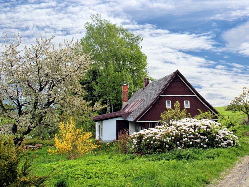 Auga sodo namelių paklausa, populiarumo netenkančios sodybos pinga
